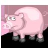 box1_pig